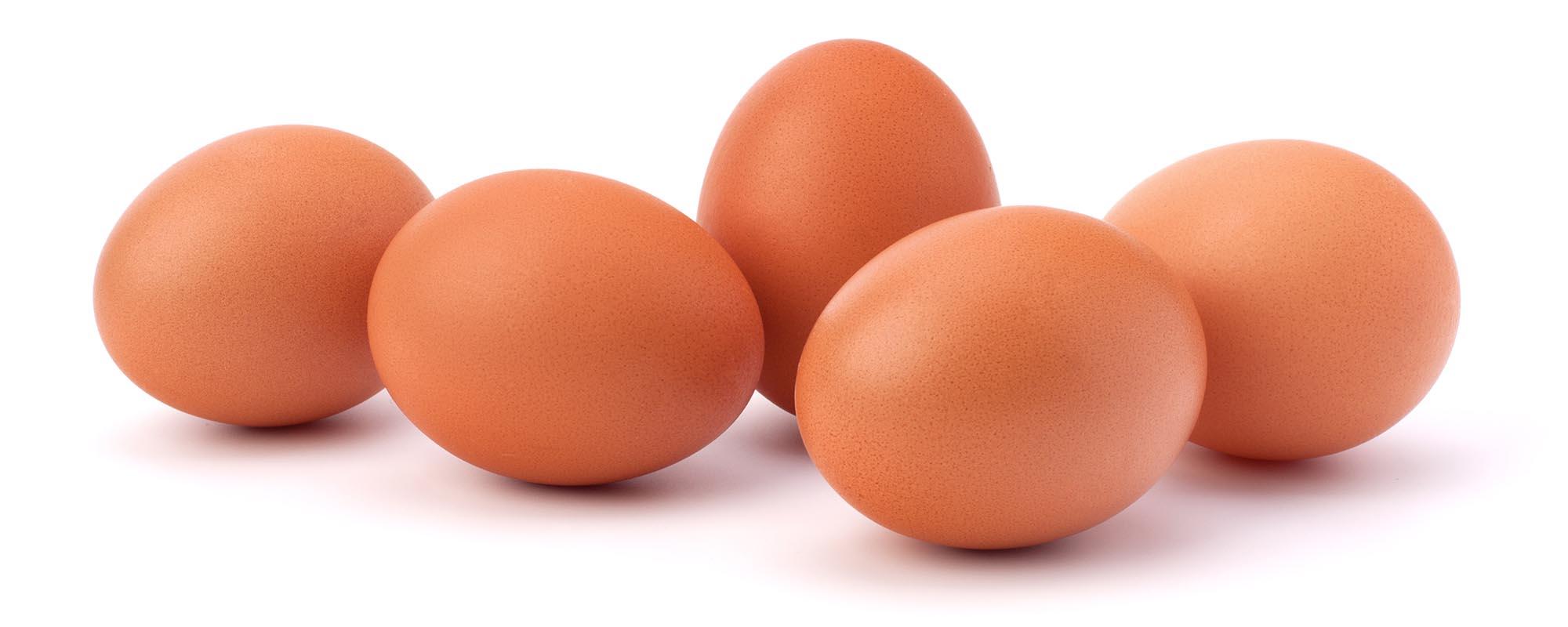 Lutsch Mir Die Eier